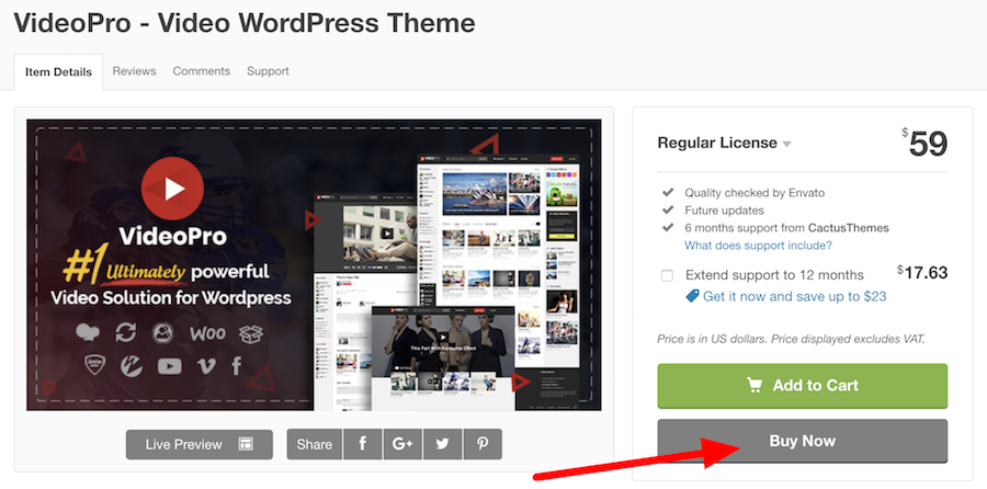 live stream wordpress theme