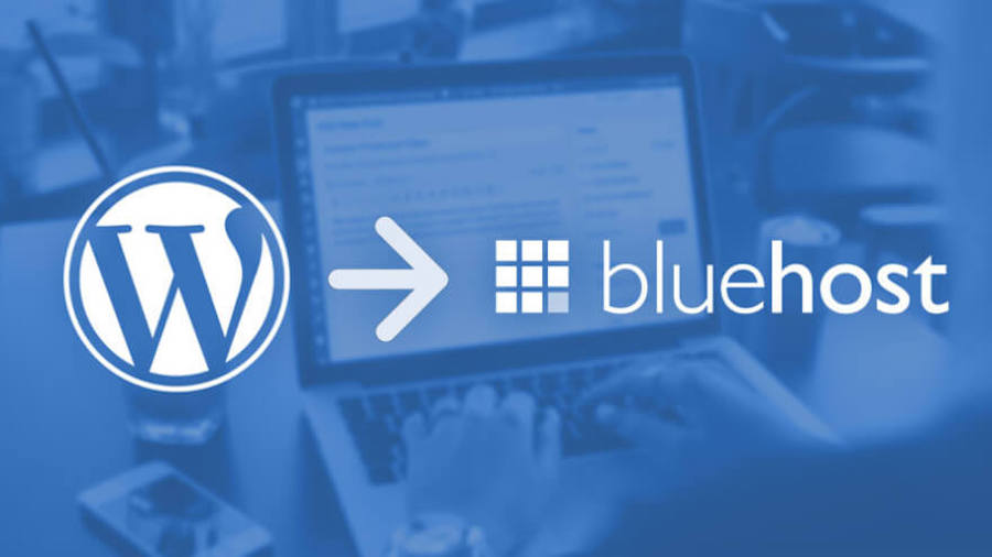 Bluehost hosting packages